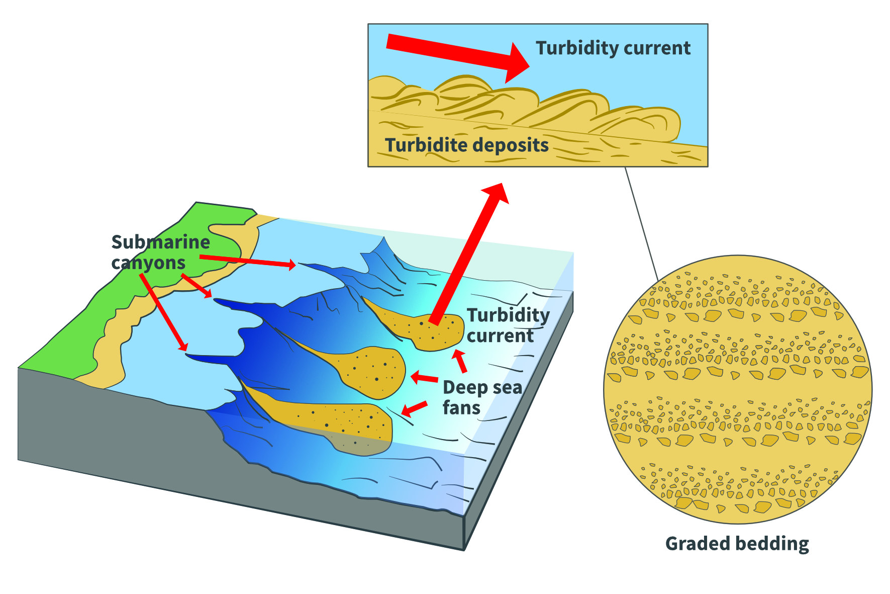 Turbidite formation
